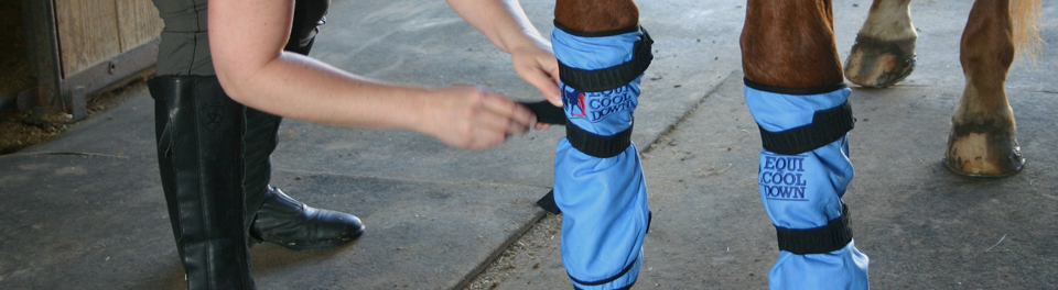 cooling products for equines cooling leg wraps