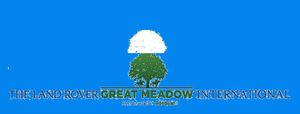 GMI_logo5